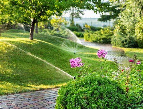 Solutions Mindset (or Irrigation Irritation)