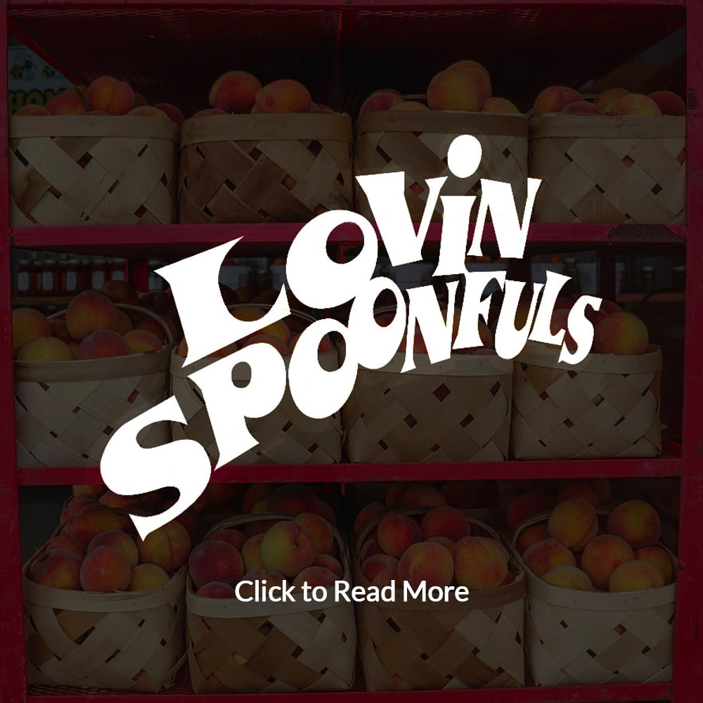 Lovin Spoonfuls Extra Light Syrup #10 Can Fruit by Leahy-IFP